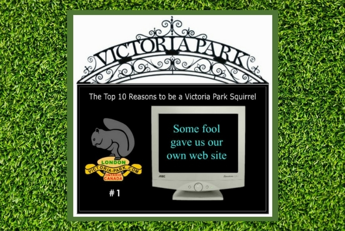 The number one reason for being a Victoria Park squirrel is that this website exists.
