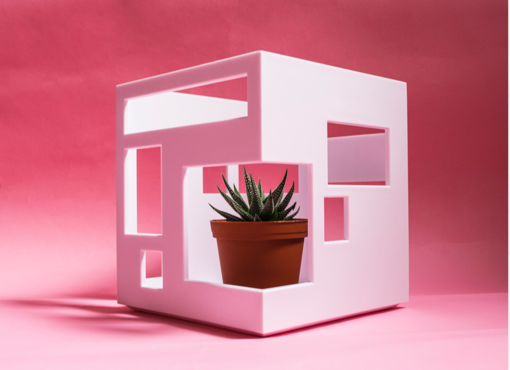 Rage Market - pink room with modern white cube and succulent