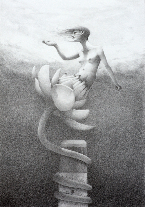 graphite drawing - surrealism woman in flower