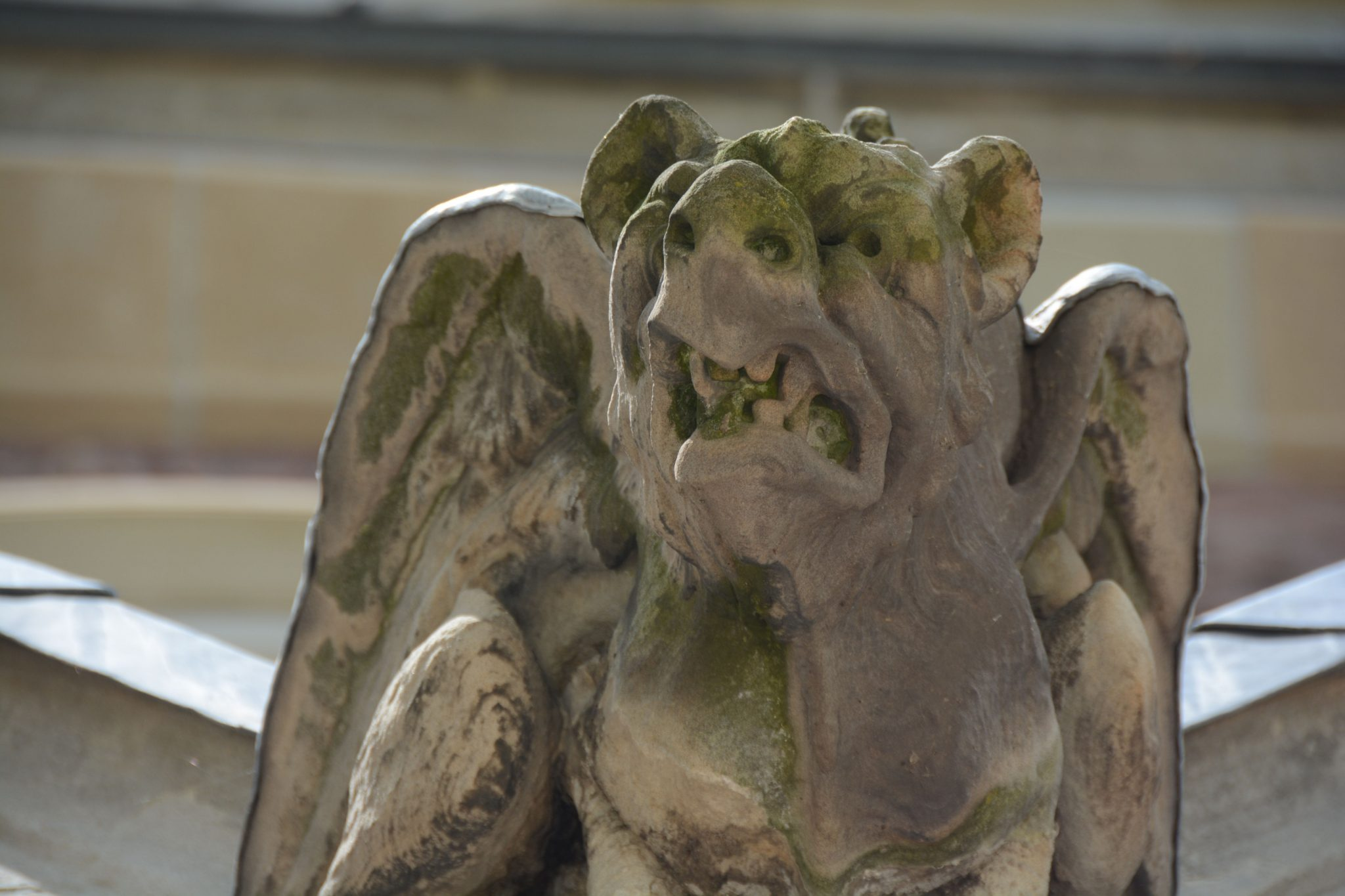 A gargoyle on St Paul's Cathedral