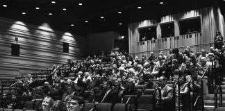 Forest City Film Festival crowd.