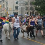 24th Annual London Pride Parade. People walking with ponies at the Pride Parade in London, Ontario. Photo by Emily Stewart.