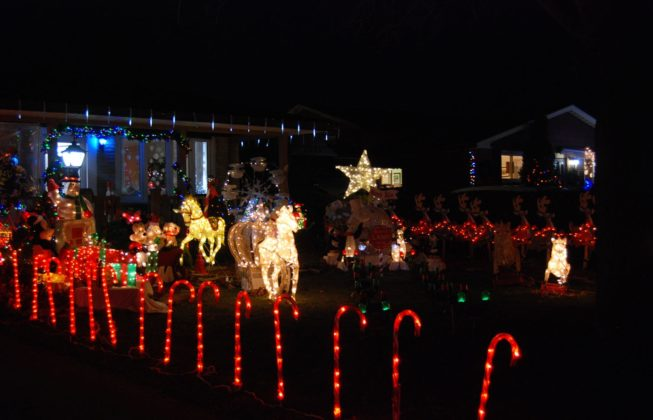 A light display on Jena Crescent filled with light up candy canes and light up horses