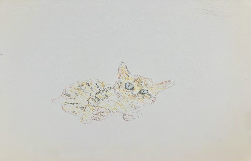 Pencil sketch of a cat on gallery wall at Eternal Wish Radio.