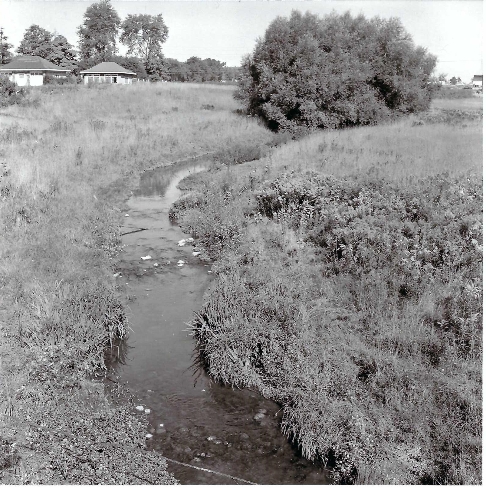 A black and white photo of the a creek with houses in Argyle in the background.