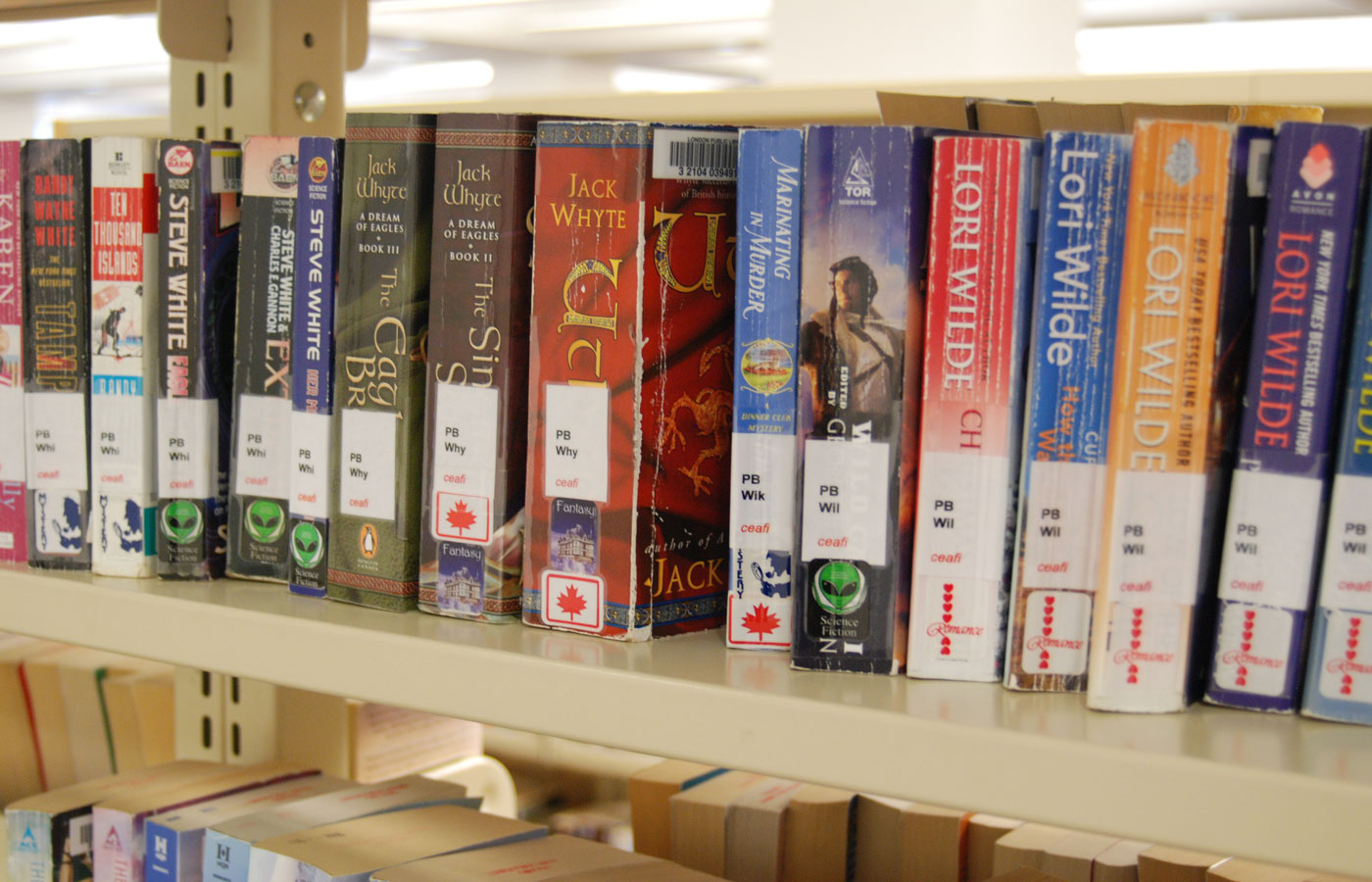 A selection of books from the London Public Library