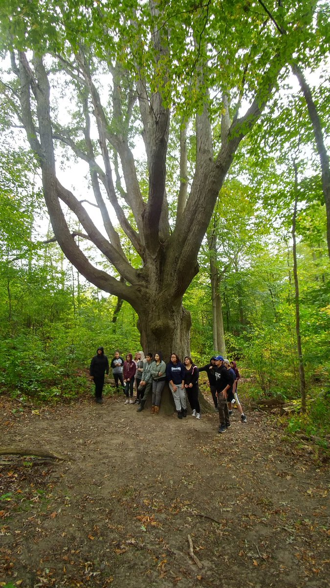 A group of students lean against a large oak tree.