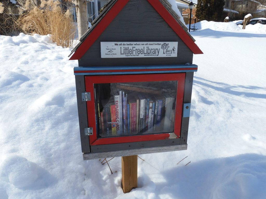 A red and blue little free library full of books standing in snow.