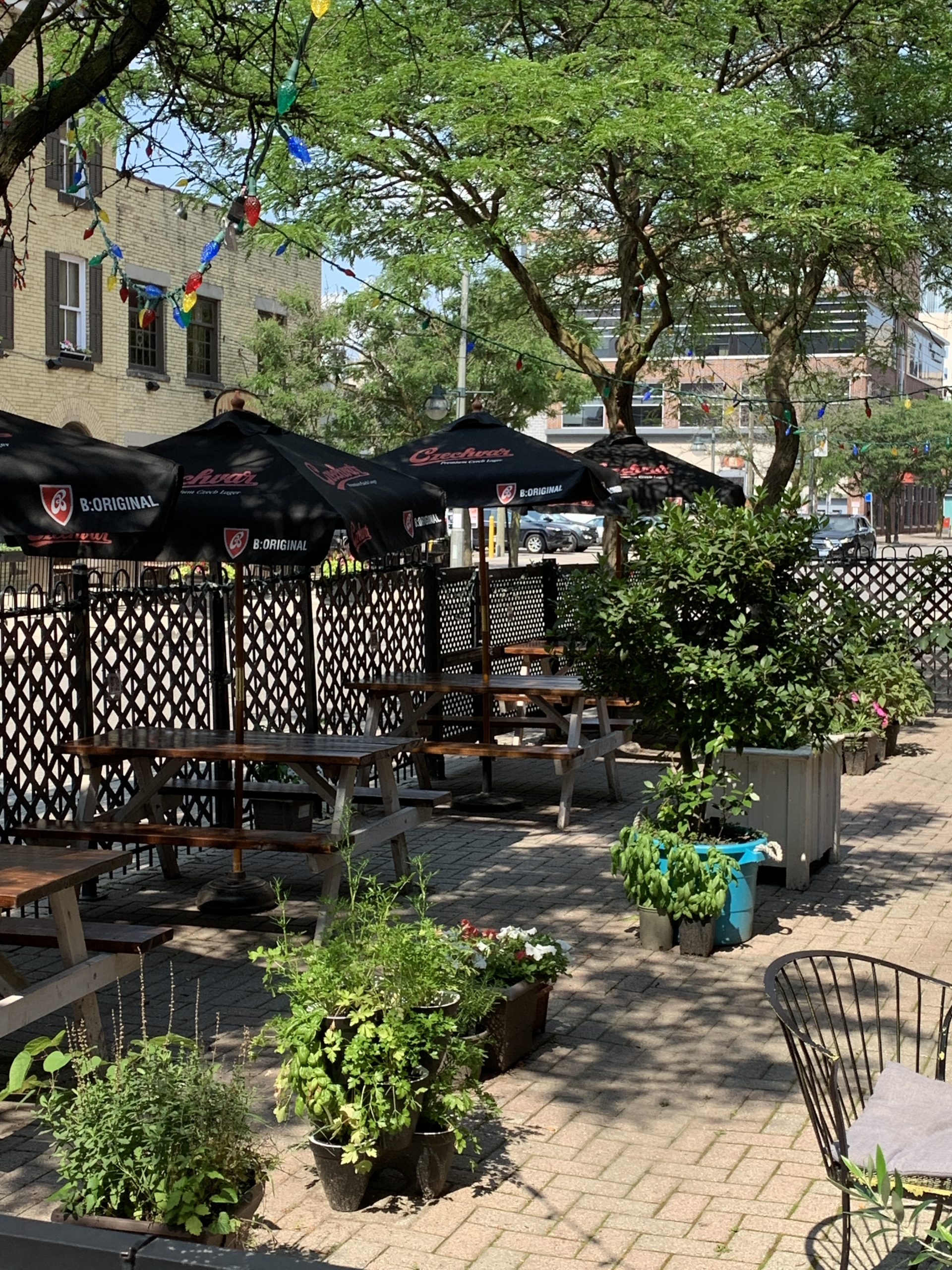 An enclosed patio with planters, picnic tables, and umbrellas at Milos.