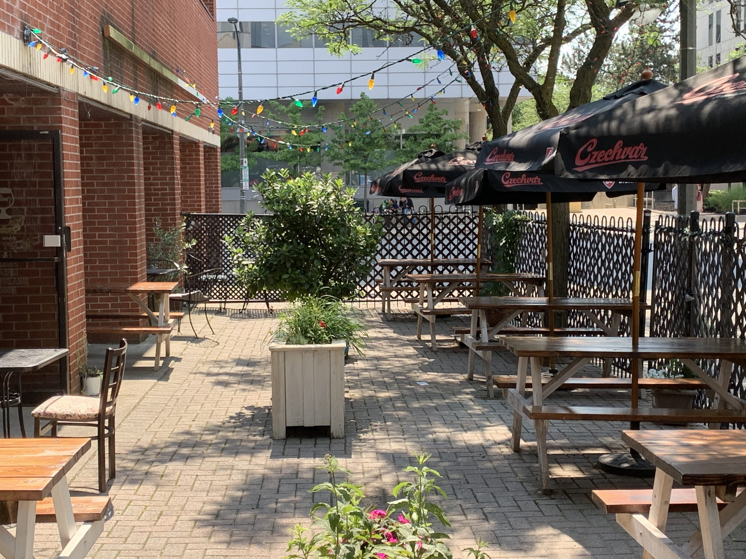 A patio with picnic tables, umbrellas, planters, and stringed lights.